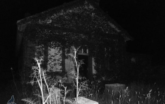 La maison blockhaus