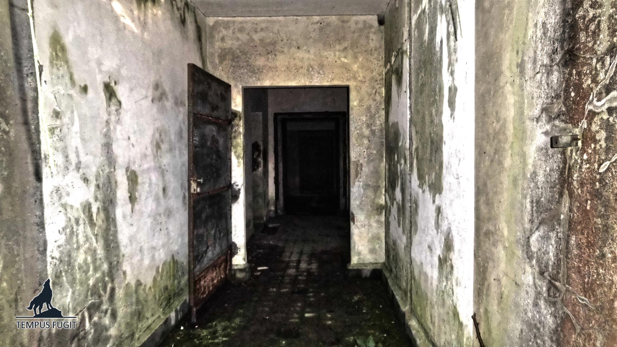 Derrière les ronces #05 : Blockhaus Seelöwe