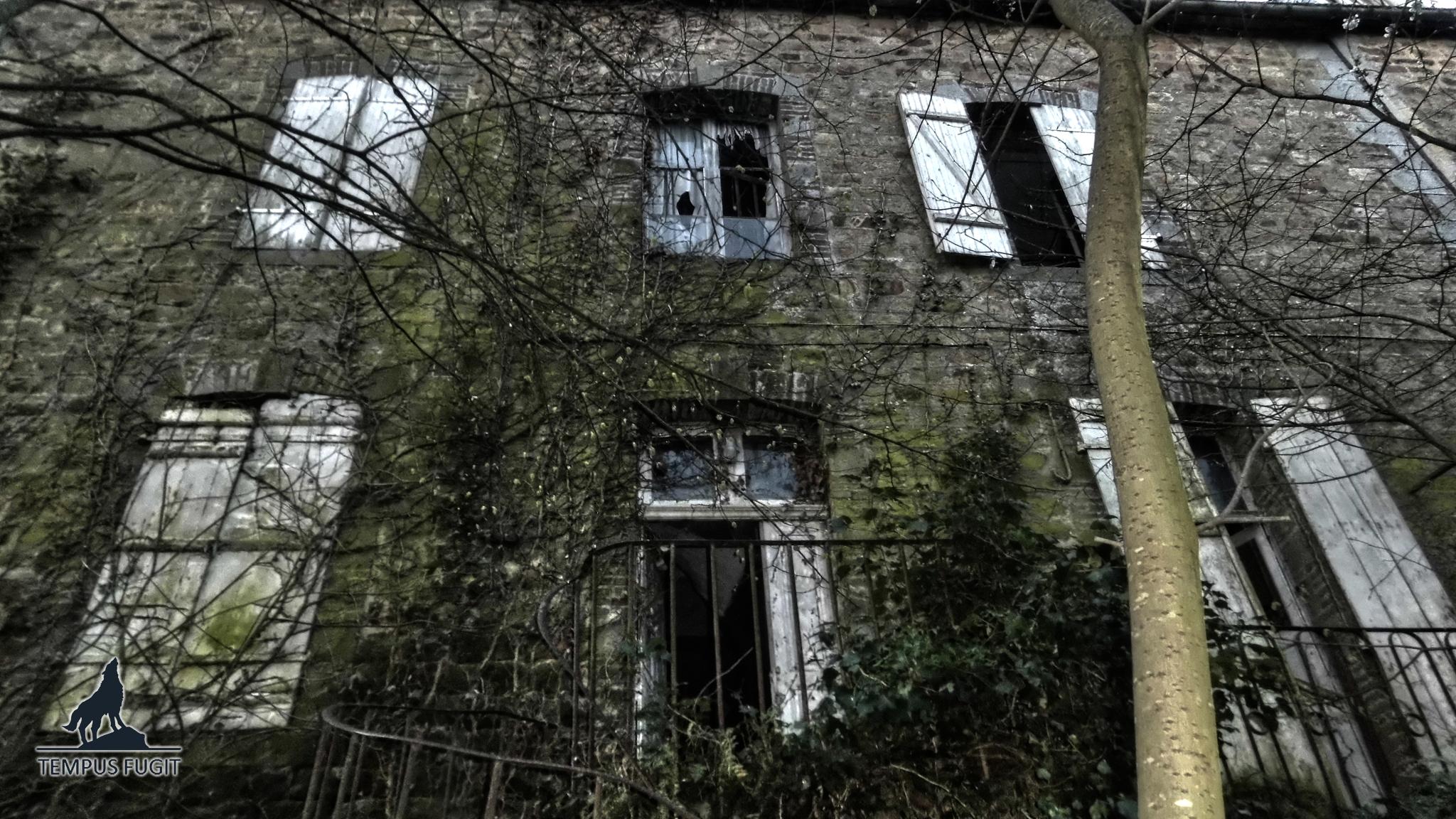 Maison Clavus (vidéo)