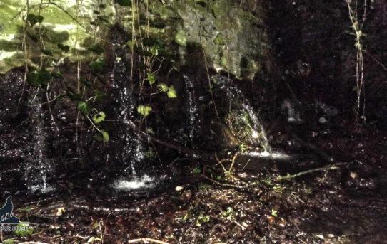 Les ruines du Château des Cygnes (partie 1)