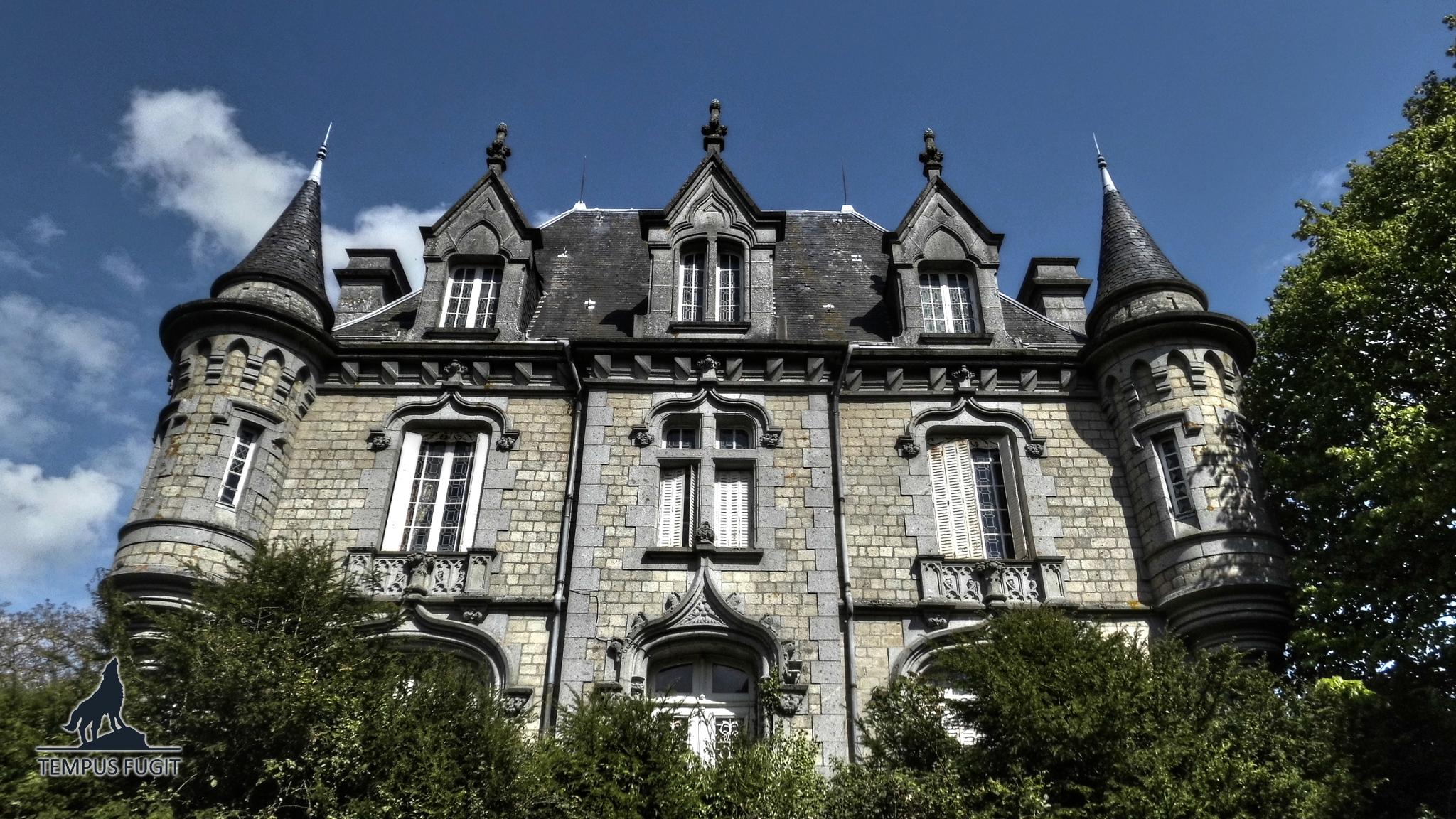 Château Amor Vinum