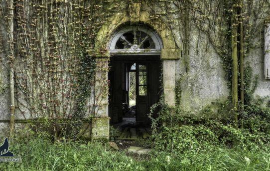 Le Château sans les Oiseaux