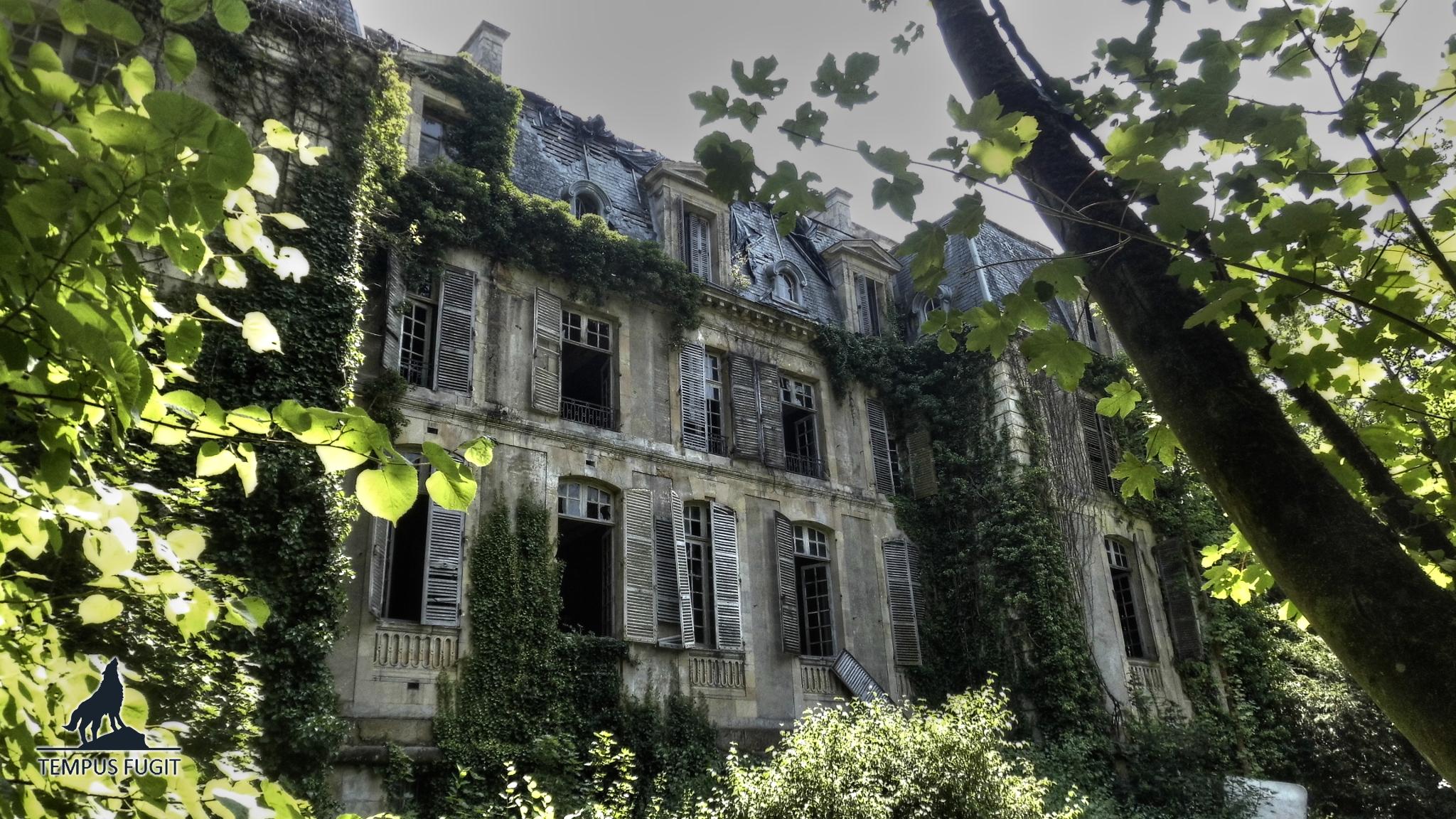Château Arcanum Insanire